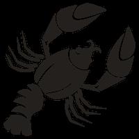 Horoscoop Kreeft Sterrenbeeld Spirit4U
