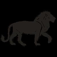 Horoscoop Leeuw Sterrenbeeld Spirit4U