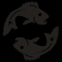 Horoscoop Vissen Sterrenbeeld Spirit4U